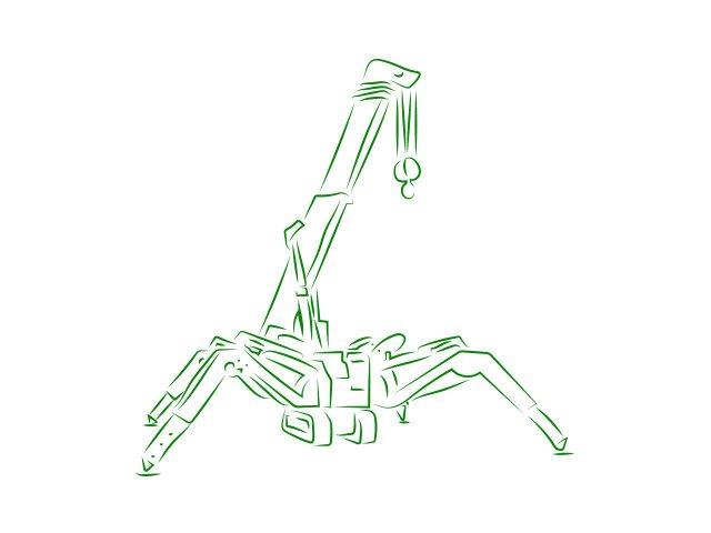 spider crane image